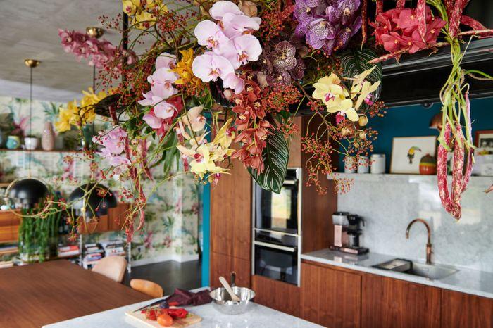 Die Orchidee Ist Im November Auf Der Blumenagenda Nachrichten