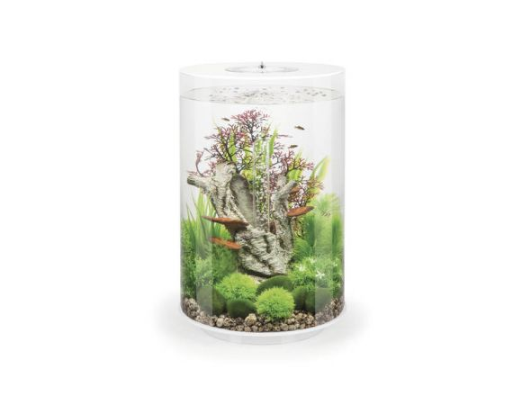 Biorb Aquarium tube 30l mcr wit - image 1